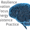 Thumbnail image for How you can cultivate a better brain: Eight strategies everyone can use