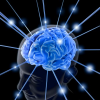 Thumbnail image for How to cultivate a better brain
